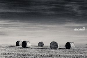 grained strawbales by AnnikaLikes