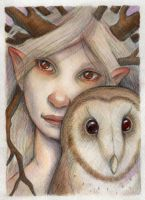 The Owl and the Dryad by WhimsicalMoon