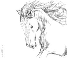 Horse Head Sketch 2 by 0-no-0