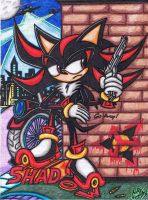 .:Art Trade:. The Black Hedgehog Who Gunned Me by AceOfSpeed94