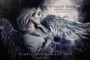 Wings at Dawn by SimplyDefinedArt