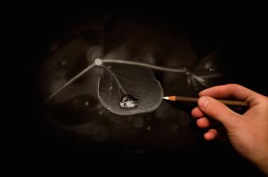 Water Droplet Charcoal Drawing by CaseyNealArtwork