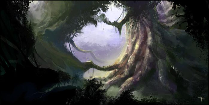 Forest concept by Vindrea