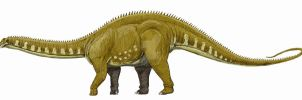 Apatosaurus excelsus by DiBgd