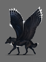The winged son by areot