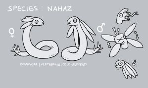 Closed-Species : NAHAZ [sheet and Info] by gemmingi