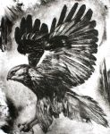 Eagle dry point by pierzyna