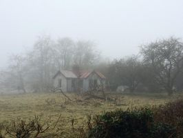Abandoned Farm-hand's cottage by anseo1985