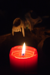 By candle light by DelinquentDog