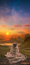 Pug Babushka by WalkingGedis