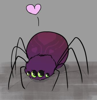 Spider by Nat-the-witch