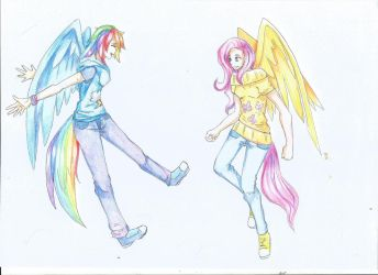 FlutterDash: In flight by HedenW