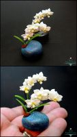 Mother's Day Gifts - Miniature Orchid Pots by Bon-AppetEats
