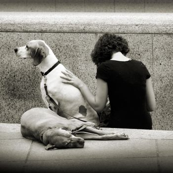 waiting for him by anjelicek