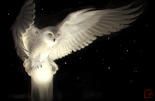 Owl and the moon by GaudiBuendia