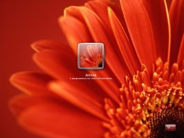 Red flower logon for xp by amine5a5