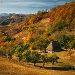 Autumn colors in Apuseni Mountains 18 by adypetrisor