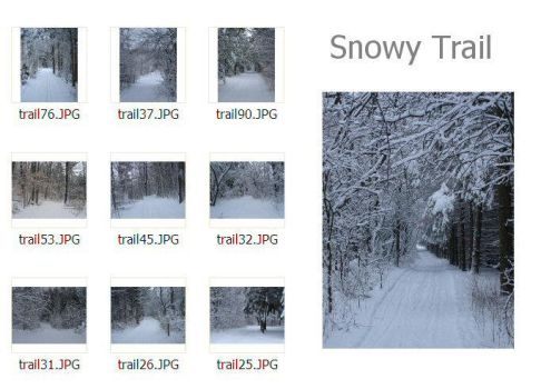 Snowy Trail photo pack by MapleRose-stock