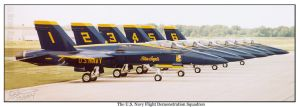 The Blue Angels by Pilots