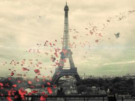 Love in Paris by Januphoto