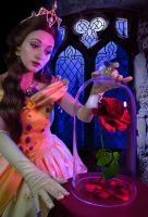 Belle - Beauty and the Beast - Truly enchanted by LadyRoseTea