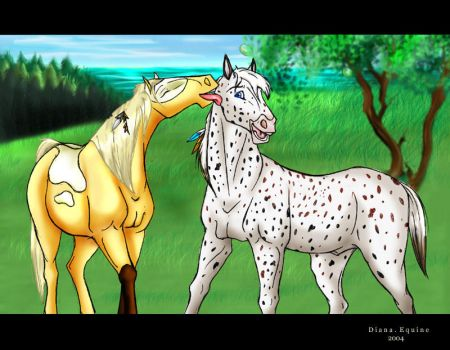 Gifts of the Cimarron by DianaEquine