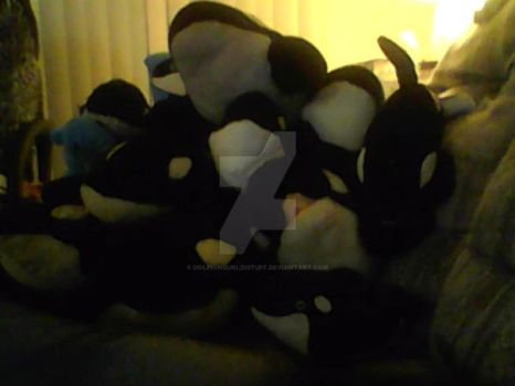 OH GOD SO MANY FUCKING WHALES XD by Dolphingurl21stuff