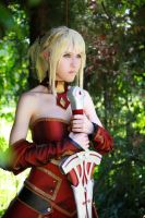 Mordred, Saber of Red cosplay - Fate/GO Apocrypha by DrosselTira