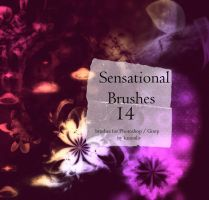 Sensational Brushes by kanonliv
