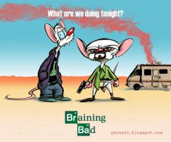 Pinkman and the Brain by Phostex