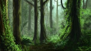 Environment 029 - Rainforest by RynkaDraws