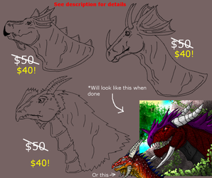 Discounted Dragonish Characters with the Works! by xX-NIGHTBANEWOLF-Xx