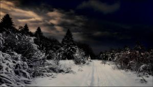 The Evening Mars 2st After Arcipelago Snowstorm by eskile