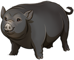 Black Pig Companion by TokoTime