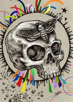 Skull and Hawkmoth by bryancollins