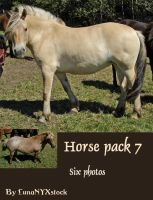 Horse pack - 07 by LunaNYXstock