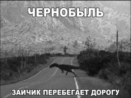 Chernobyl. Bunny crosses the street. by Wowches