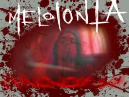 Melolonta ID by melolonta