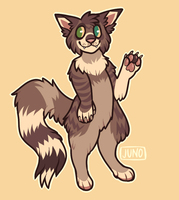 fluffy cat by californiacoyote