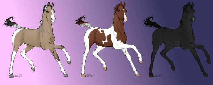 Foal Designs |OPEN| 1 Left by NorthernMyth