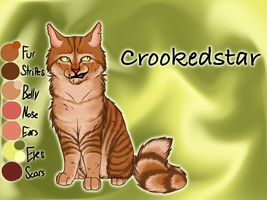 Crookedstar of RiverClan - A Dangerous Path by Jayie-The-Hufflepuff