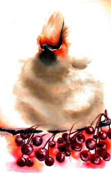 Waxwing by Verenique