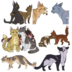 warrior cat request compilation by cowardfish