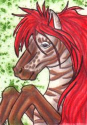 Horic ACEO by Rianne2k8