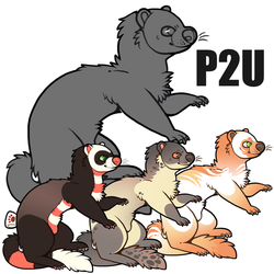 mink / ferret base p2u - $1.00 or 100 points! by thekingtheory