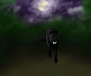 Midnight Stalker by littlefoxling101