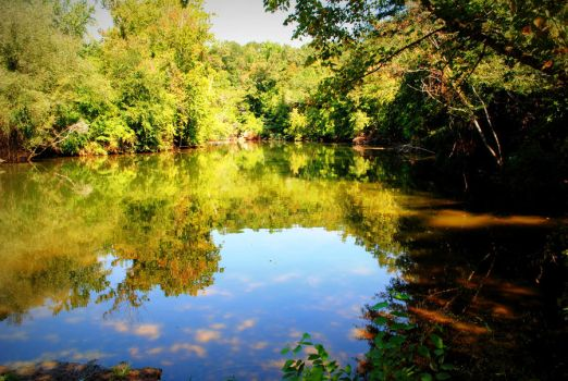 Reflecting Creek by cmbfoster1978