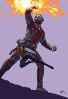 Ant-Man  The Wasp by DJarquin