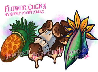 Flower Cocks Mystery Adopts 8 {CLOSED} by frozenvepar