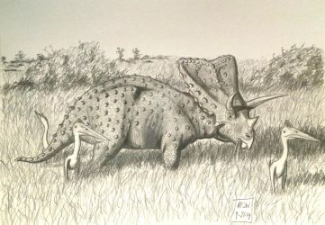 Big Bend Buddies-Torosaurus and Azhdarchids by Franz-Josef73